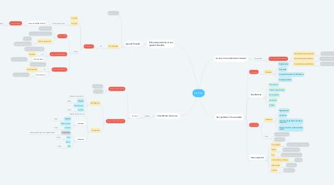 Mind Map: La Veu
