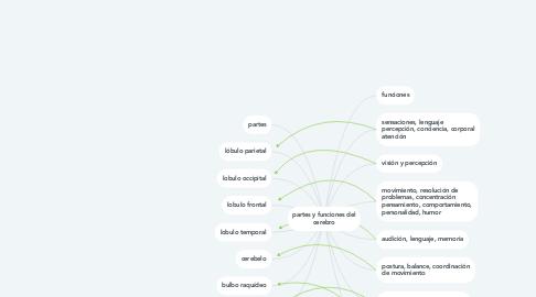Mind Map: partes y funciones del cerebro