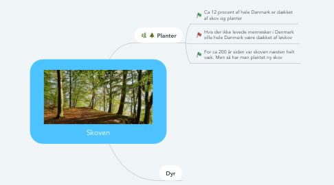 Mind Map: Skoven