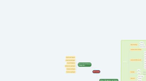 Mind Map: WZ Training