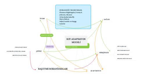 Mind Map: ROY ADAPTASYON MODELİ