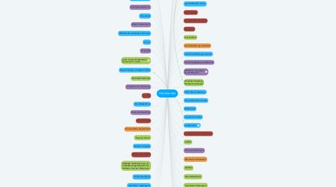 Mind Map: Het Alberreke