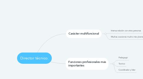 Mind Map: Director técnico.