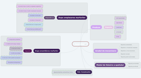 Mind Map: Depozitul