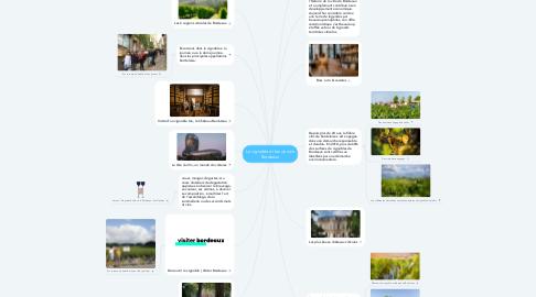 Mind Map: Le vignoble et les vins de Bordeaux