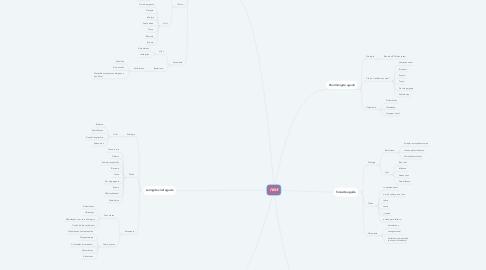 Mind Map: IVAS