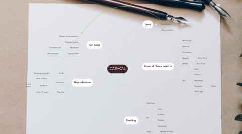 Mind Map: CARACAL