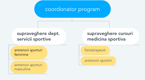 Mind Map: coordonator program