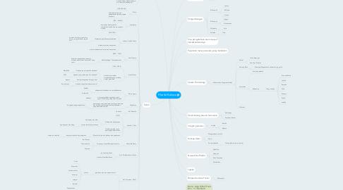 Mind Map: Filsafat Bahasa