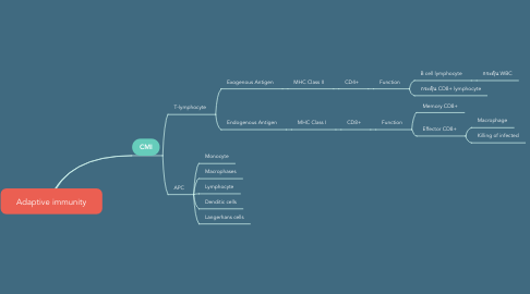 Mind Map: Adaptive immunity
