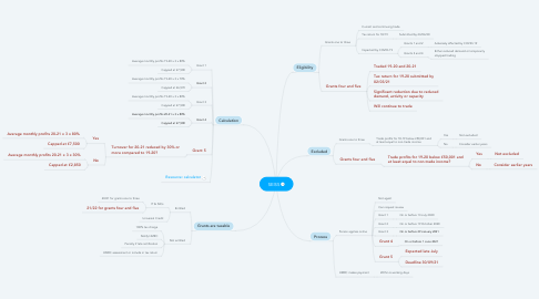 Mind Map: SEISS