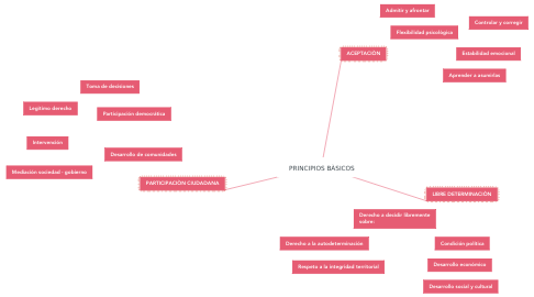 Mind Map: PRINCIPIOS BÀSICOS