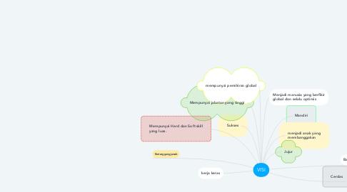 Mind Map: VISI