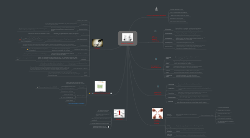 Mind Map: How to negotiate?