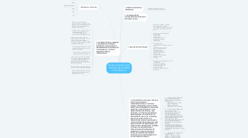 Mind Map: MODELO RAPIDO PARA TOMA DE DECISIONES ETICOMEDICAS
