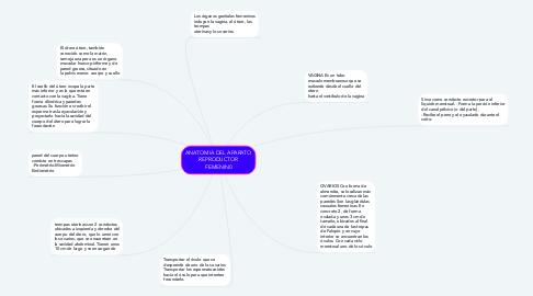 Mind Map: ANATOMIA DEL APARATO REPRODUCTOR FEMENIN0
