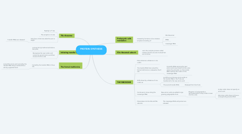 Mind Map: PROTEIN SYNTHESIS 🔬🧬