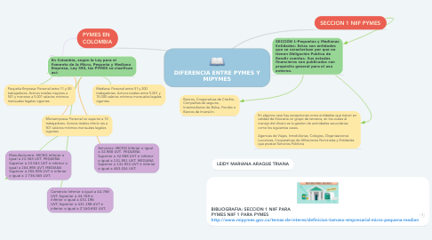 Mind Map: DIFERENCIA ENTRE PYMES Y MIPYMES