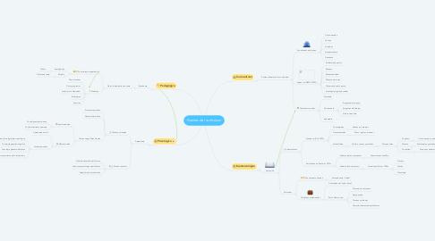 Mind Map: Fuentes del currículum