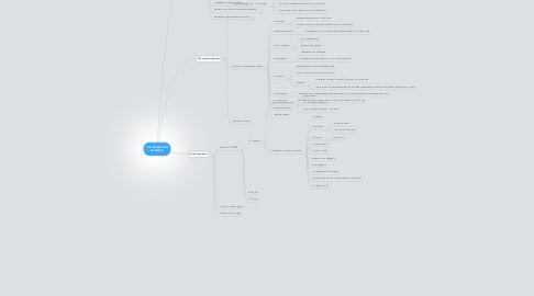Mind Map: Гай Кавасаки Стартап