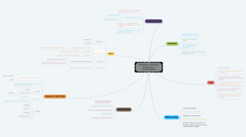 Mind Map: ÓRGANOS LINFOIDES PRIMARIOS Y SECUNDARIOS