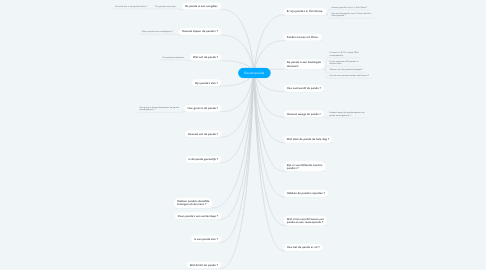 Mind Map: Reuzenpanda
