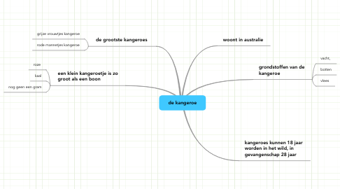 Mind Map: de kangeroe