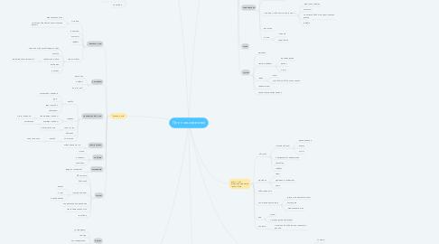 Mind Map: Пути пользователей