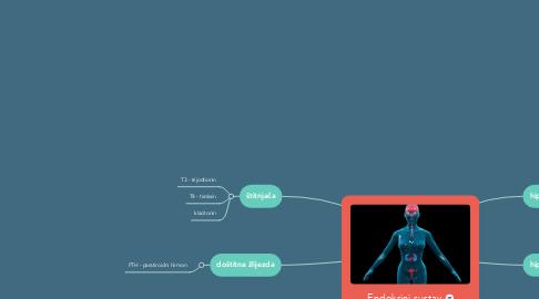 Mind Map: Endokrini sustav