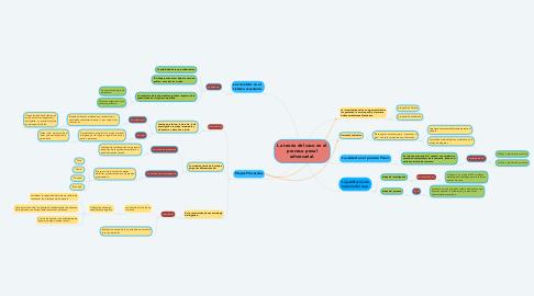 Mind Map: La teoría del caso en el proceso penal adversarial.