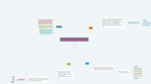 Mind Map: Relación: Suelo-Agua-Planta-Atmósfera