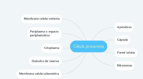 Mind Map: Célula procariota