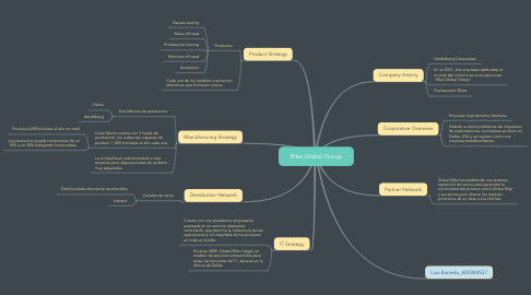 Mind Map: Bike Global Group
