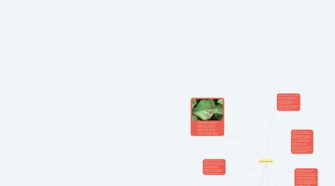Mind Map: Agentes fitopatólogo