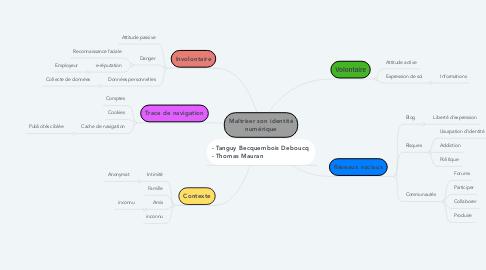 Mind Map: Maîtriser son identité numérique