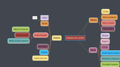 Mind Map: Anatomia do ouvido