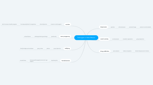 Mind Map: Teenagers in New Mexico
