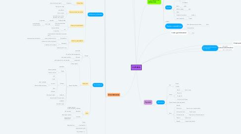 Mind Map: SUTURA
