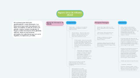 Mind Map: Registro Único De Afiliados  (RUAF)