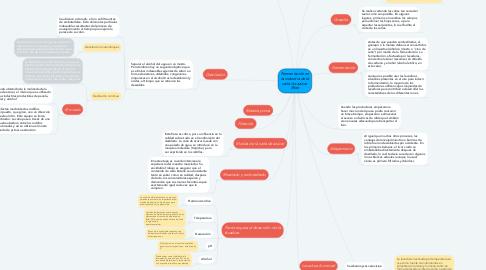 Mind Map: Fermentación en la industria de la caña de azúcar (Ron)