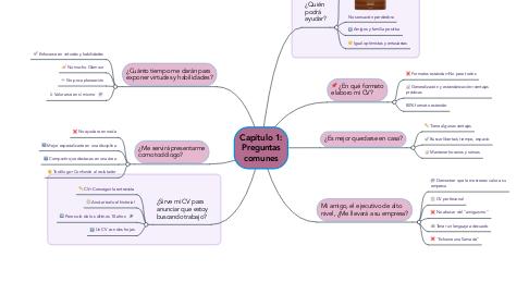 Mind Map: Capítulo 1: Preguntas comunes