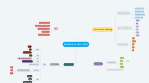 Mind Map: EVIDENCE OF EVOLUTION