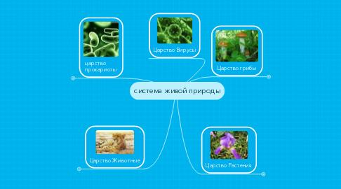 Mind Map: система живой природы