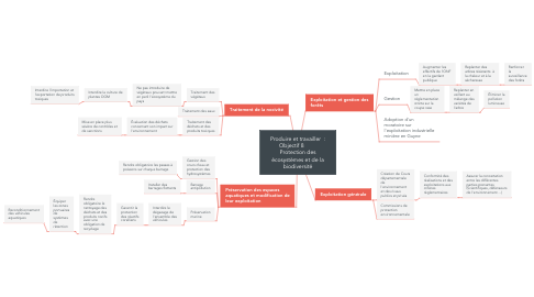 Mind Map: Produire et travailler  : Objectif 8         Protection des écosystèmes et de la biodiversité