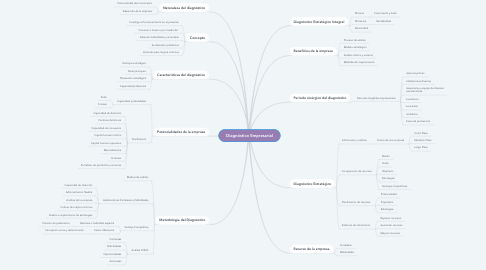 Mind Map: Diagnóstico Empresarial