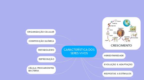 Mind Map: CARACTERÍSTICA DOS SERES VIVOS