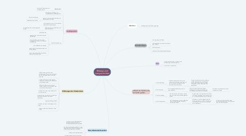 Mind Map: Bildungs-und Lerngeschichten