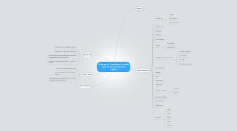 Mind Map: Operazione Consulenza: di baio ti aiuta a trovare la soluzione migliore