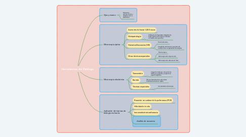 Mind Map: Herramientas del Patólogo