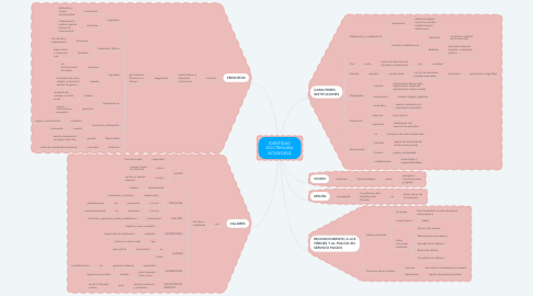 Mind Map: IDENTIDAD DOCTRINARIA INTANGIBLE